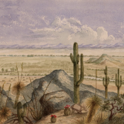 Arizona-View-overlooking-Pinto-Village_Bartlett
